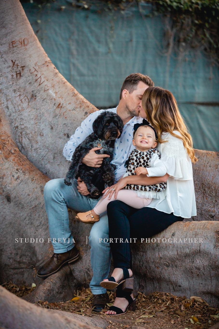 Balboa Tree Family Pictures