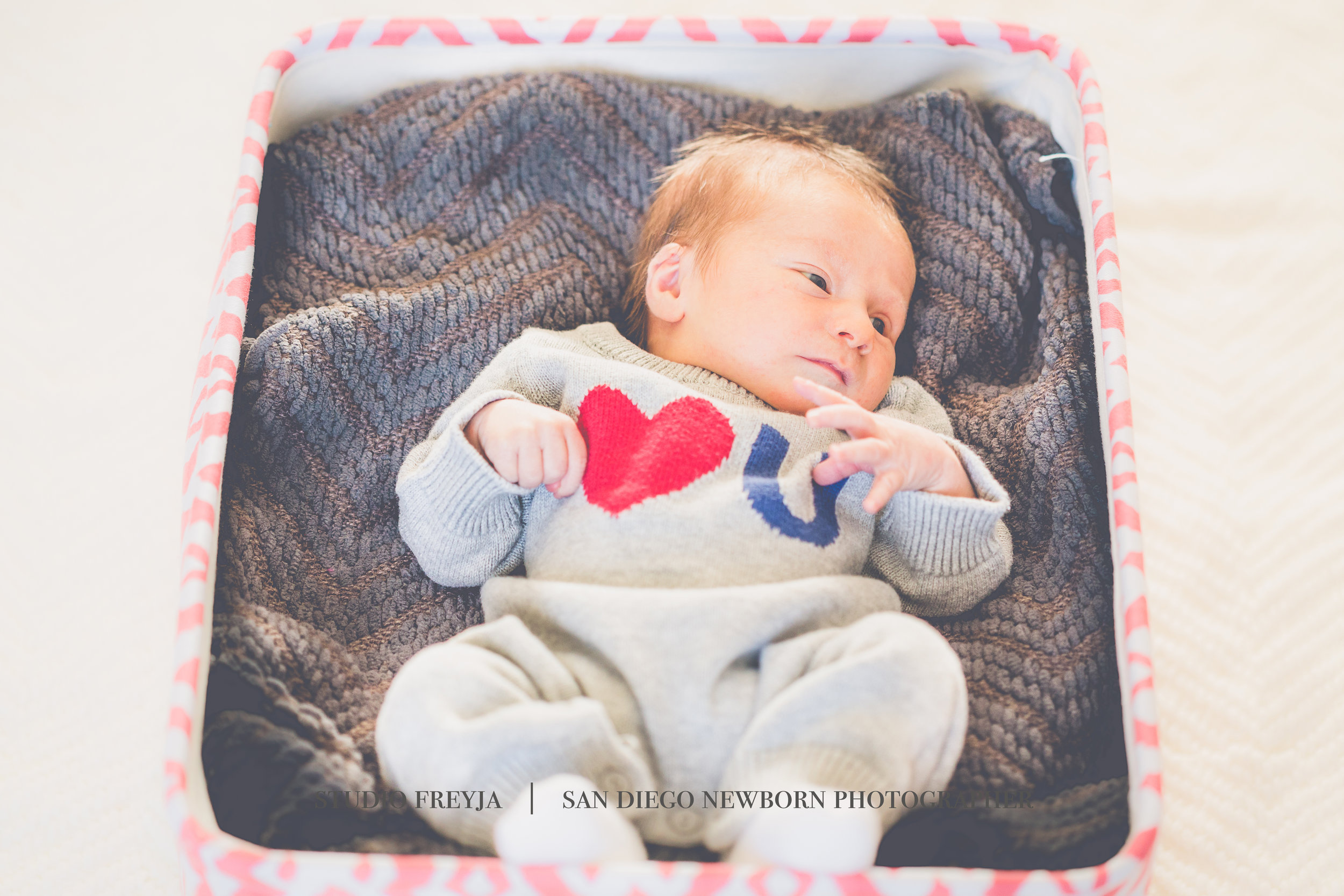 My very first newborn session before I really knew what newborn photography really was or entailed.