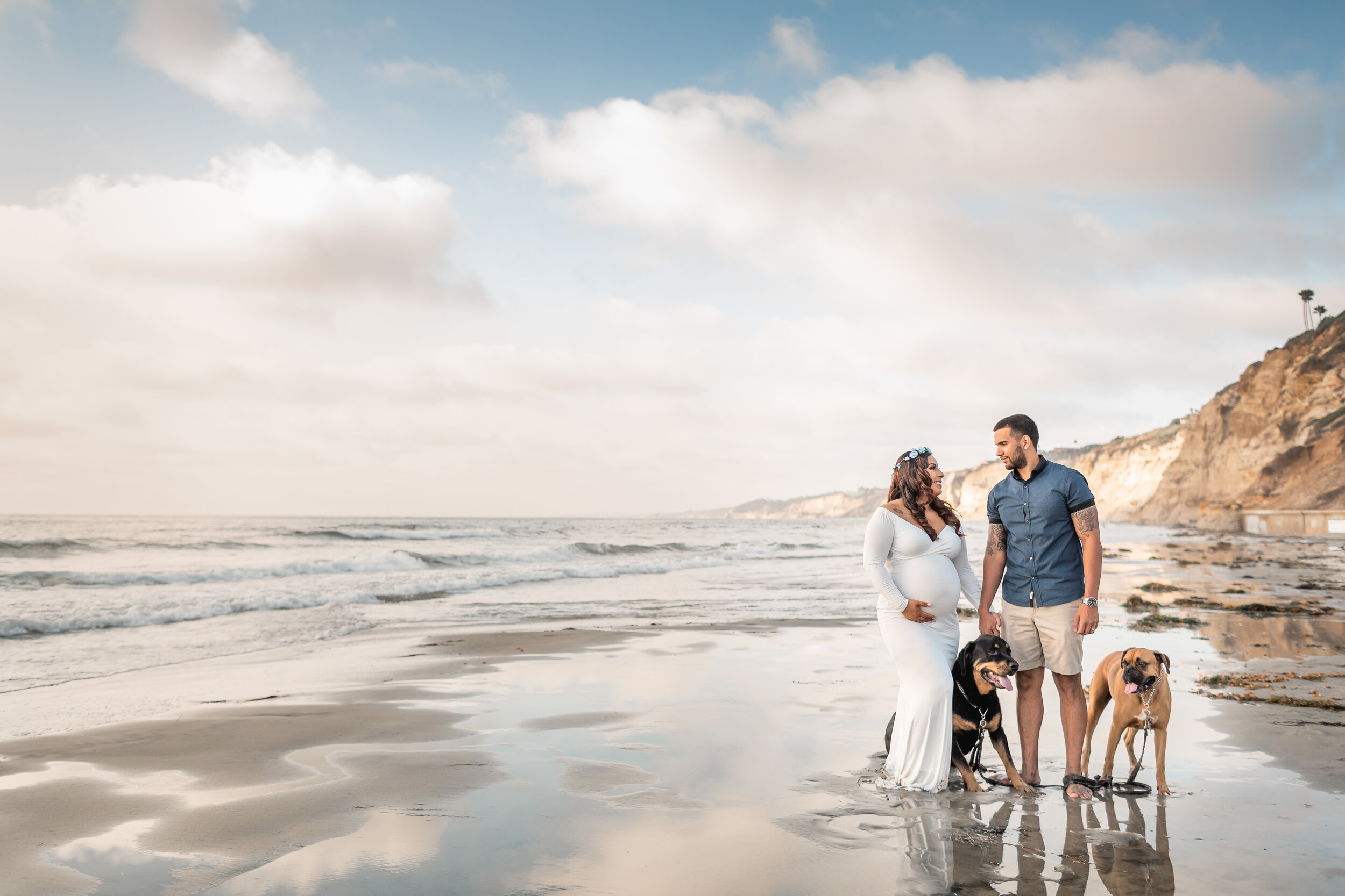 La Jolla Shores Beach Maternity Session with Dogs