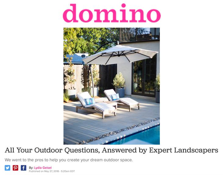 Domino Article Header.jpg