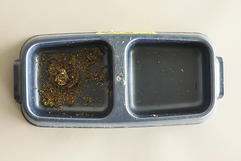foodtrat-1.jpg