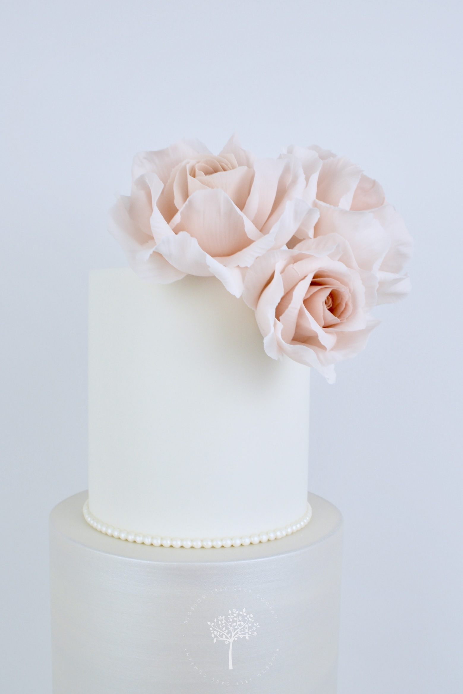 Pearlescent and Blush Petal Shells wedding cake by Blossom Tree Cake Company Harrogate North Yorkshire - sugar roses.jpg