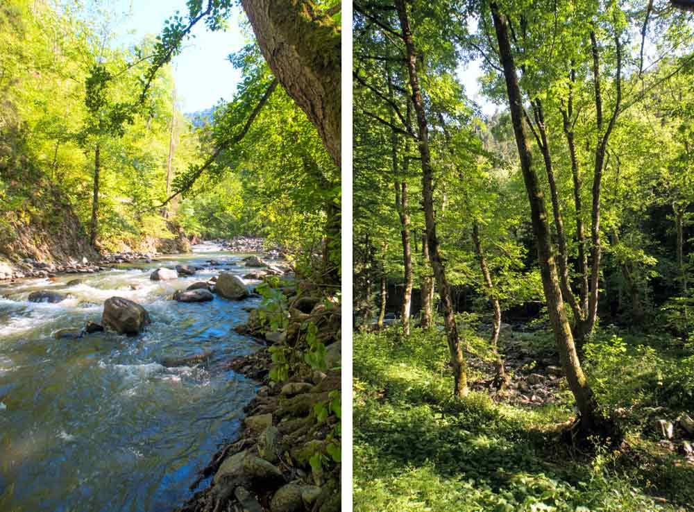 Боржоми-Курорты-Природа-Грузия-Отдых-Туры-NAMERANI.jpg