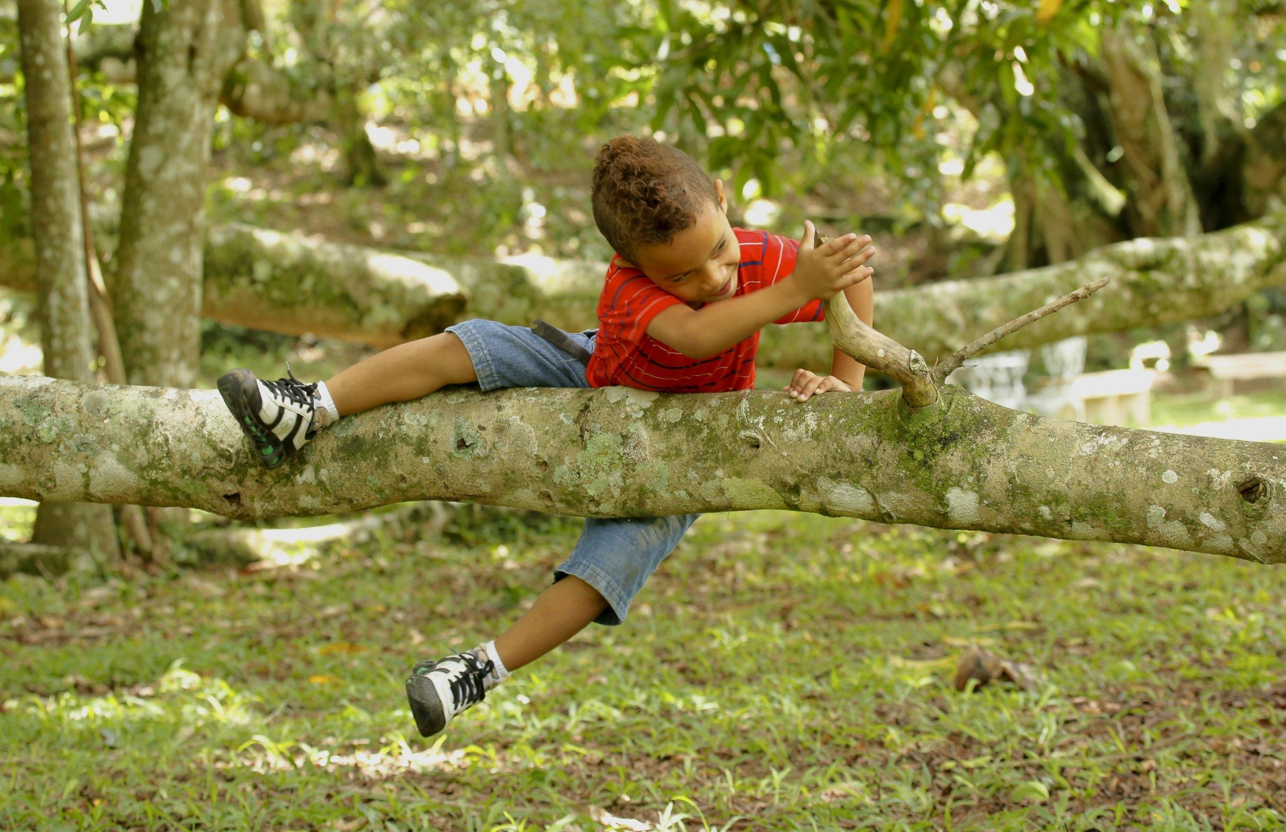Kid on Branch.jpg