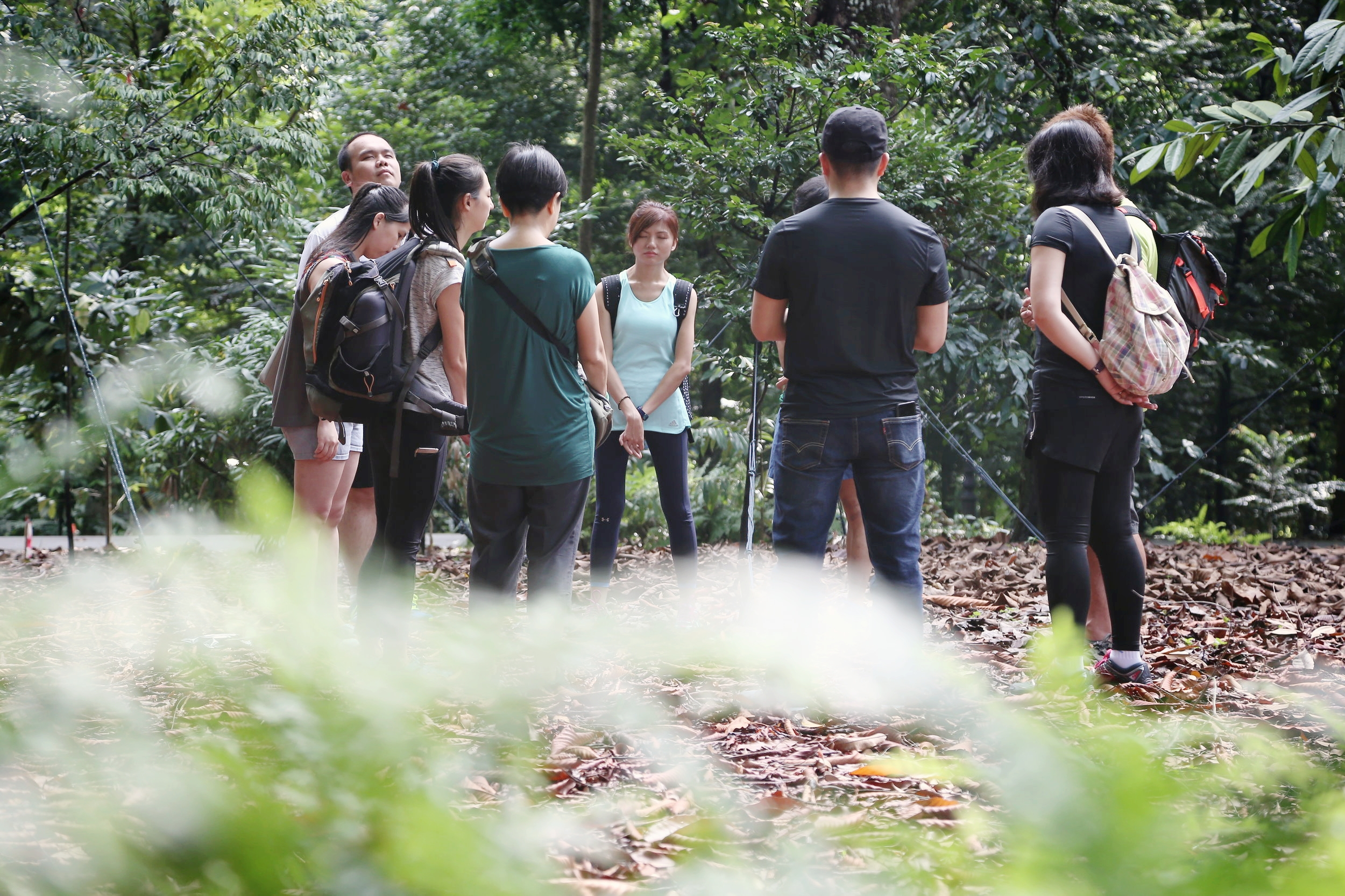 Forest therapy open class at Singapore Botanic Gardens
