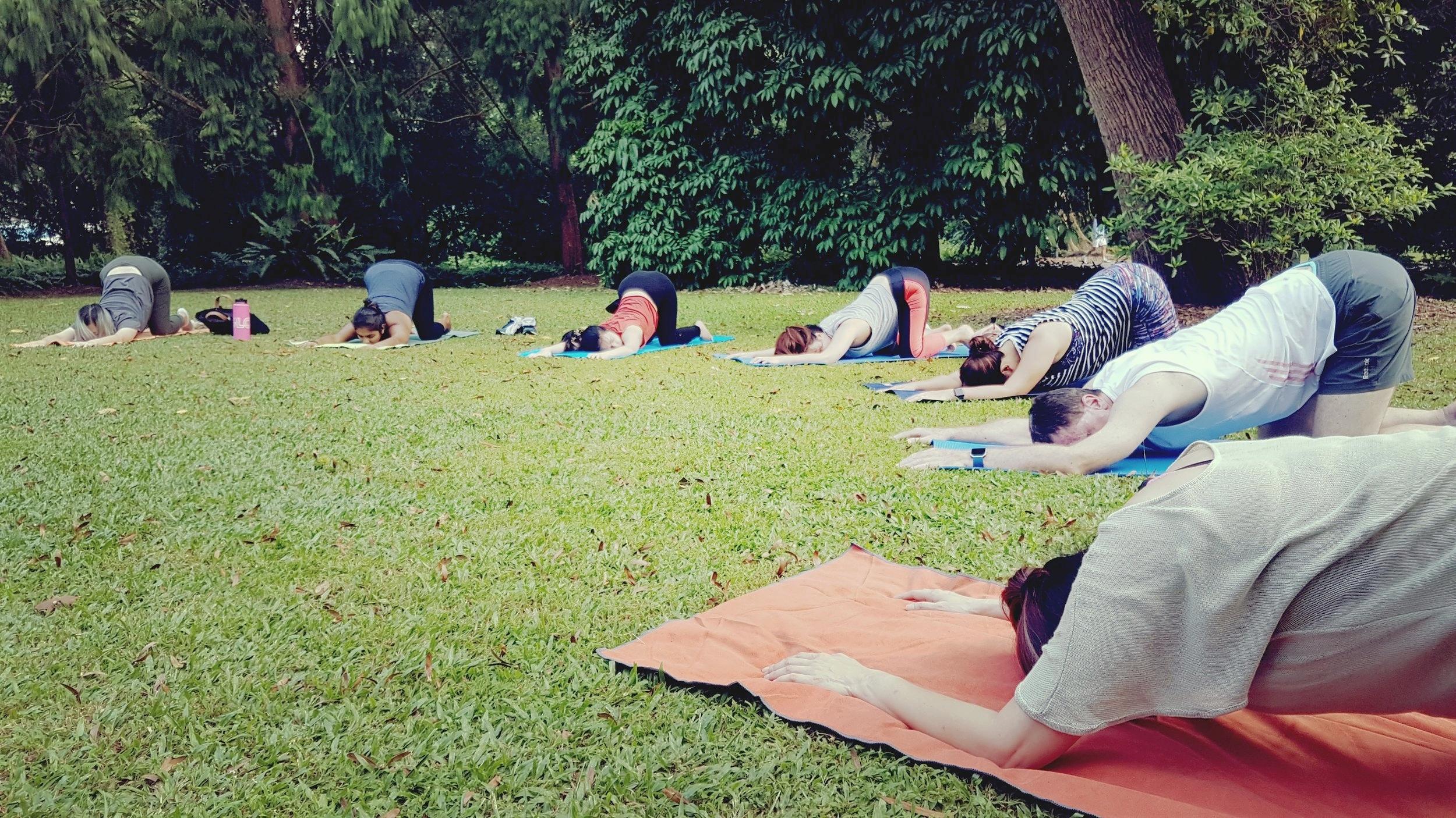 True Nature - forest bathing + yin yoga, Singapore