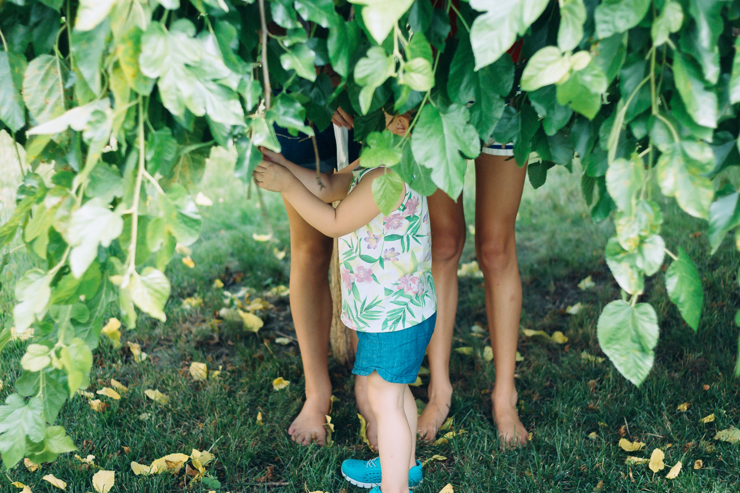 Forest therapy for mental and emotional resilience in children and youths