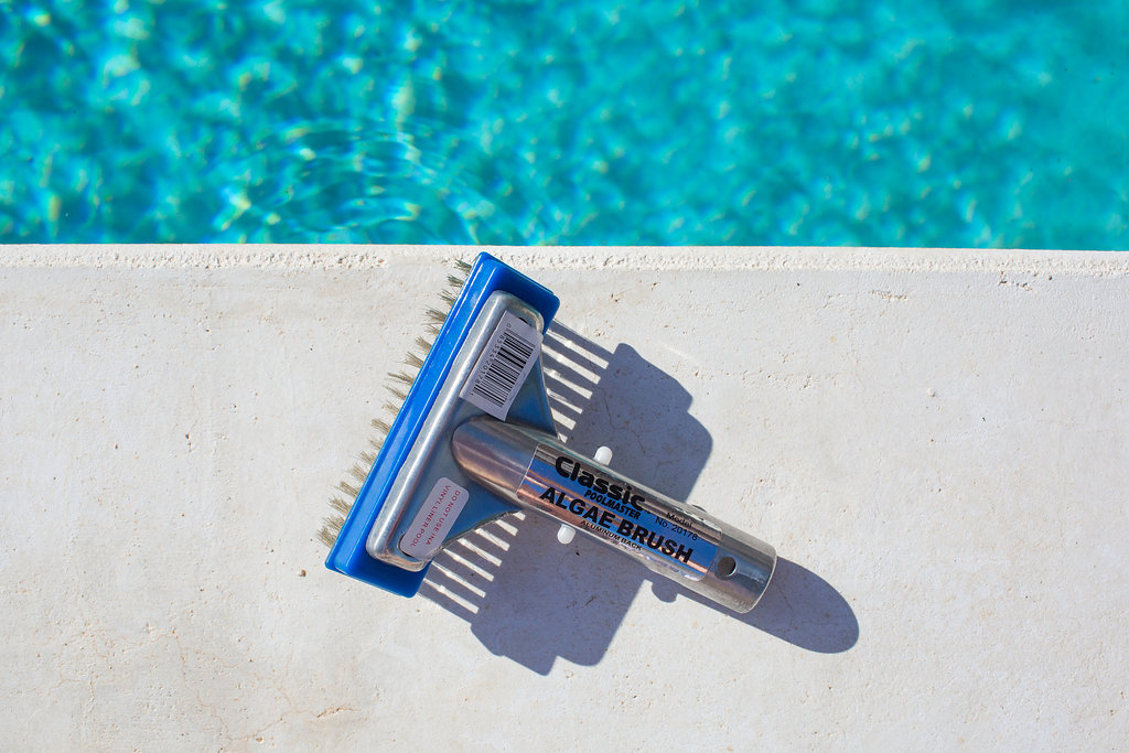Pool brushes