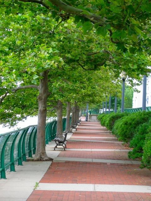 03 Cottonwood Walkway.jpeg