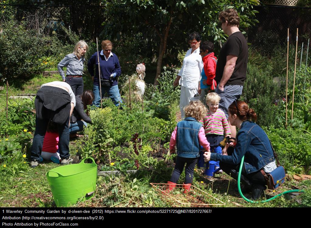 Click for Garden Map -
