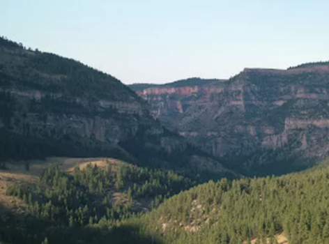 Bighorn mountains, montana