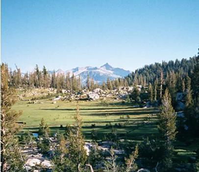 Sunrise Meadows area of Yosemite National Park