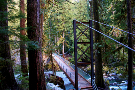 Staircase trail, olympic national park