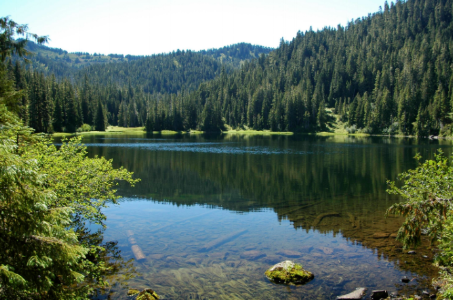 Deer lake, olympic national park