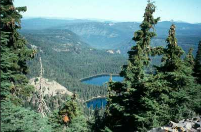 Rogue River–Siskiyou National Forest