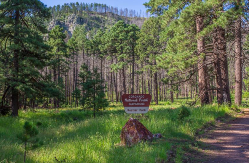 Rustler Park, Chiricahuas