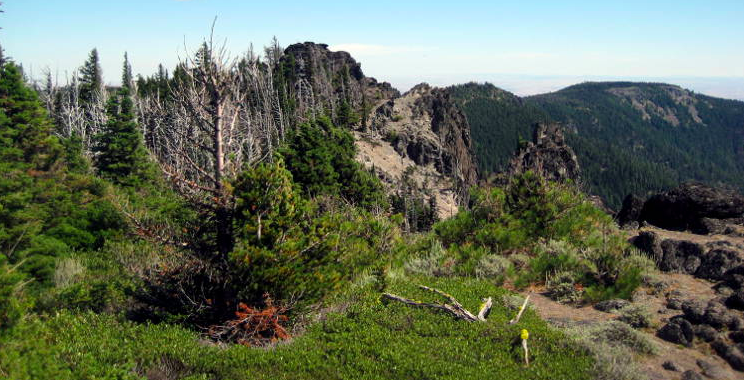 Badger Creek Wilderness Oregon