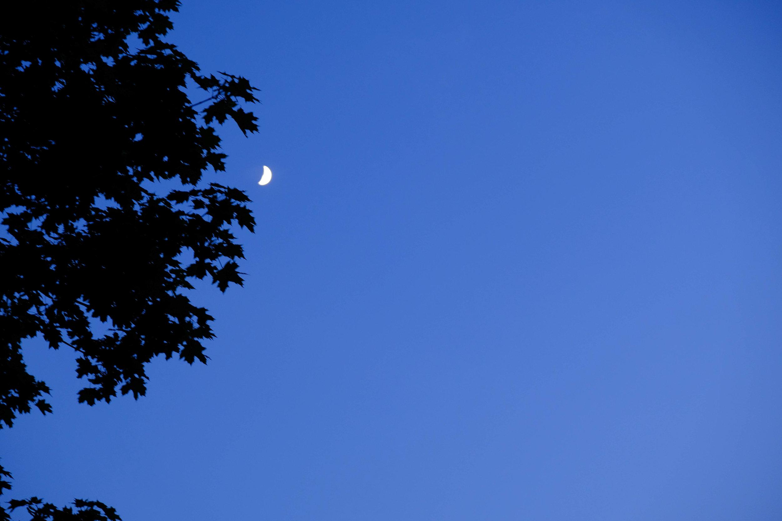 moon&may-3.jpg