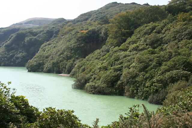 Lansalon Pit, Cornwall. This is a former china clay mining pit—a depleted environment—that, as well as being ethereally beautiful, is also home to rare plant kin. Photo by Tony Atkin, Creative Commons CC BY-SA 2.0.