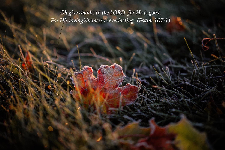 Psalm 107:1.jpg