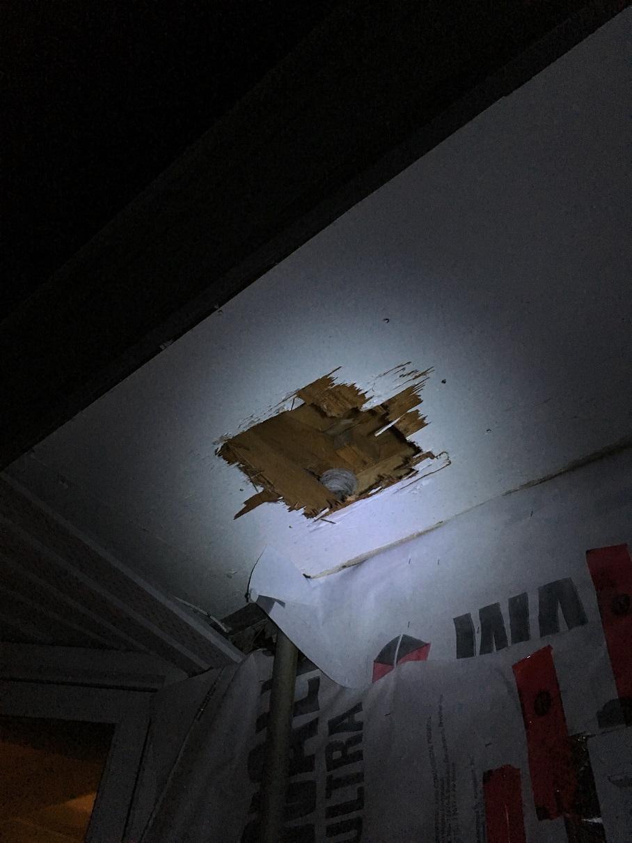 Elmwood soffit ventilation web.jpg