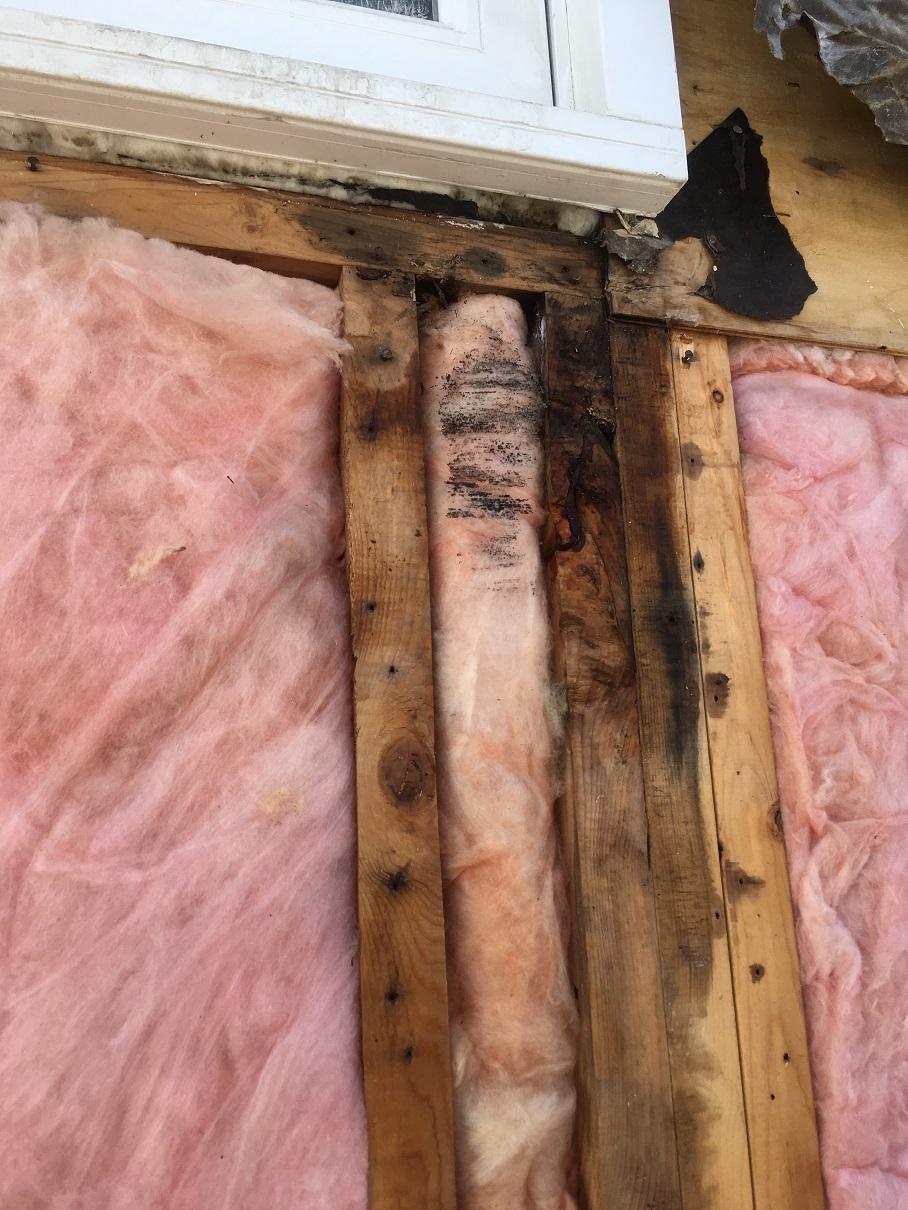 Elmwood water damage web.jpg