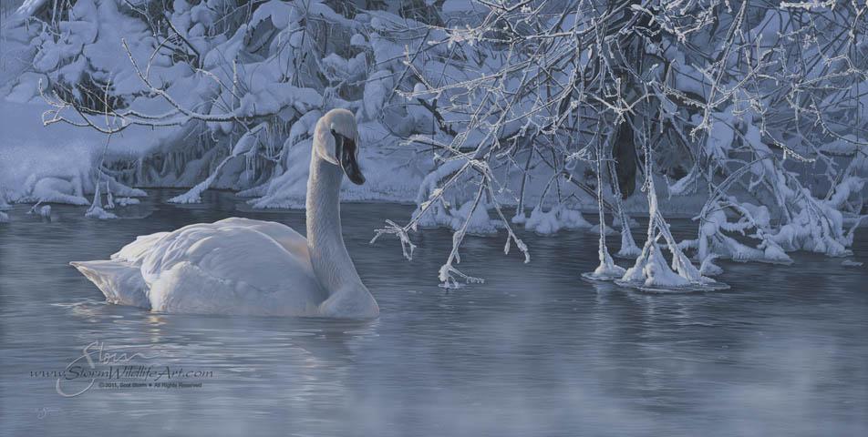 Winter Elegance.jpg