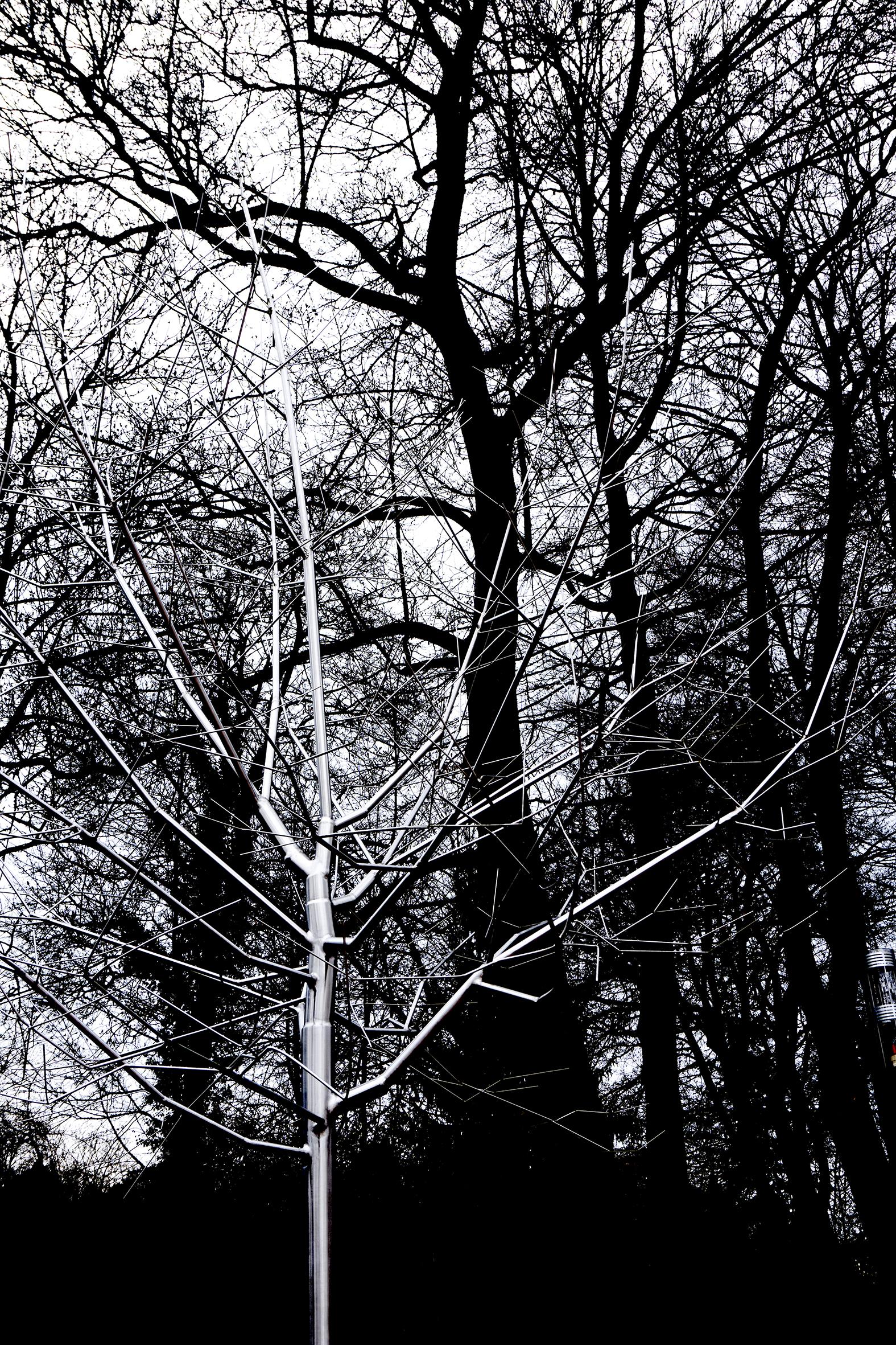 Jinmo Kang ,  TreePortrait (2009) dans le parc du musée.