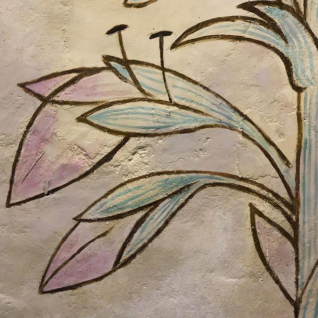 *les simples de Jean Cocteau... *wonderful plant paintings by Jean Cocteau. . #millylaforet #chapellesaintblaise #jeancocteau #simples #plantesmedicinales #artcontemporain #