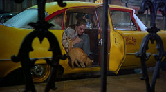 """Audrey Hepburn & Cat in Taxi Cab, """"Breakfast at Tiffany's"""" (1961)Photo by  classic_film on  Foter.com / CC BY-NC"""