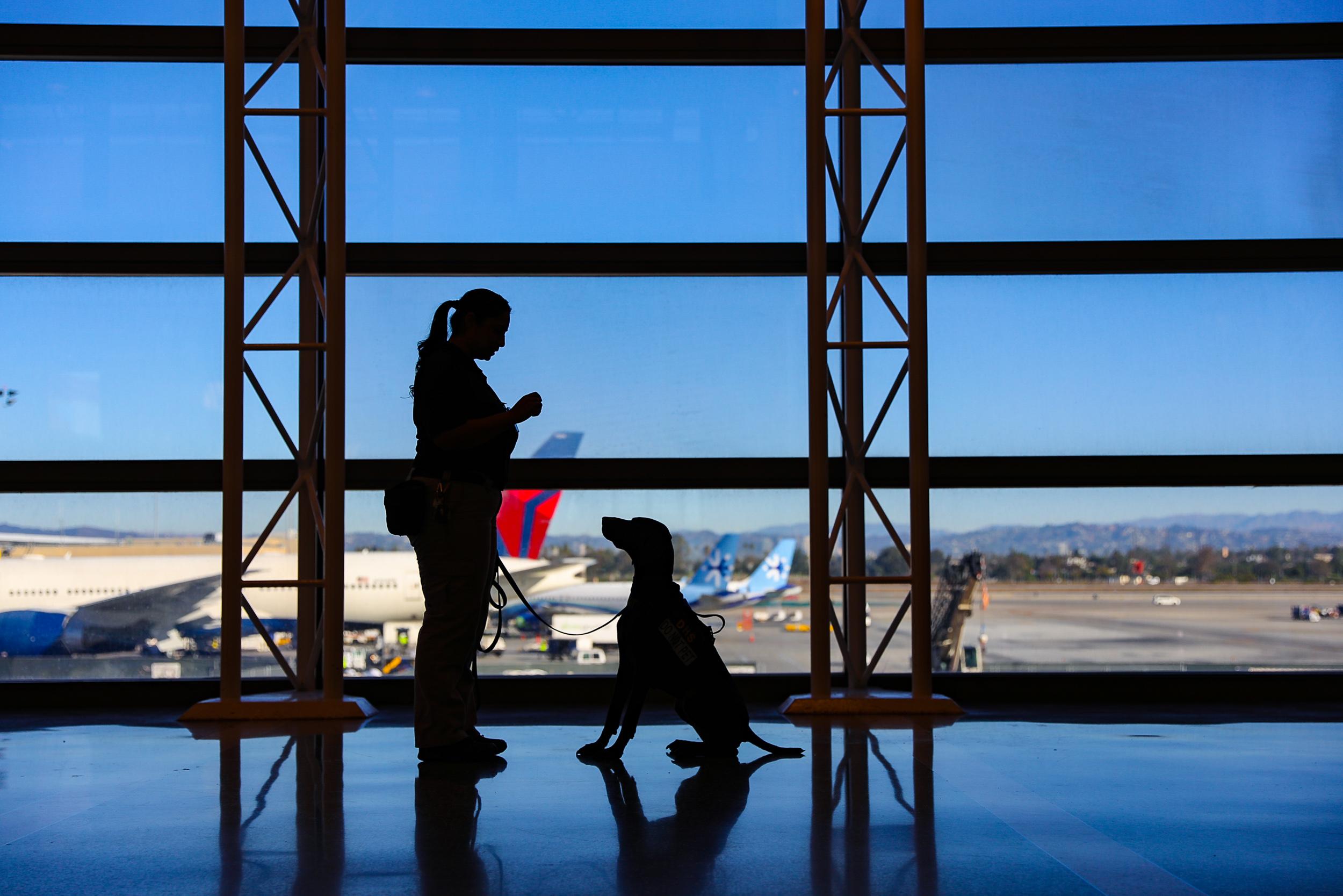 Tara Parekh TSA Canine LAX Photographs-01.jpg