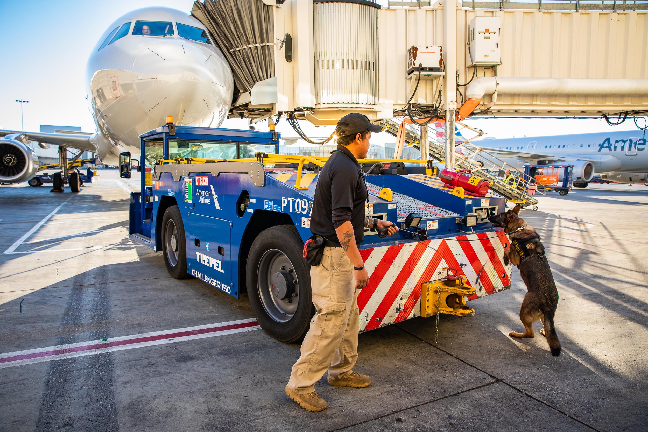 Tara Parekh TSA Canine LAX Photographs-03.jpg