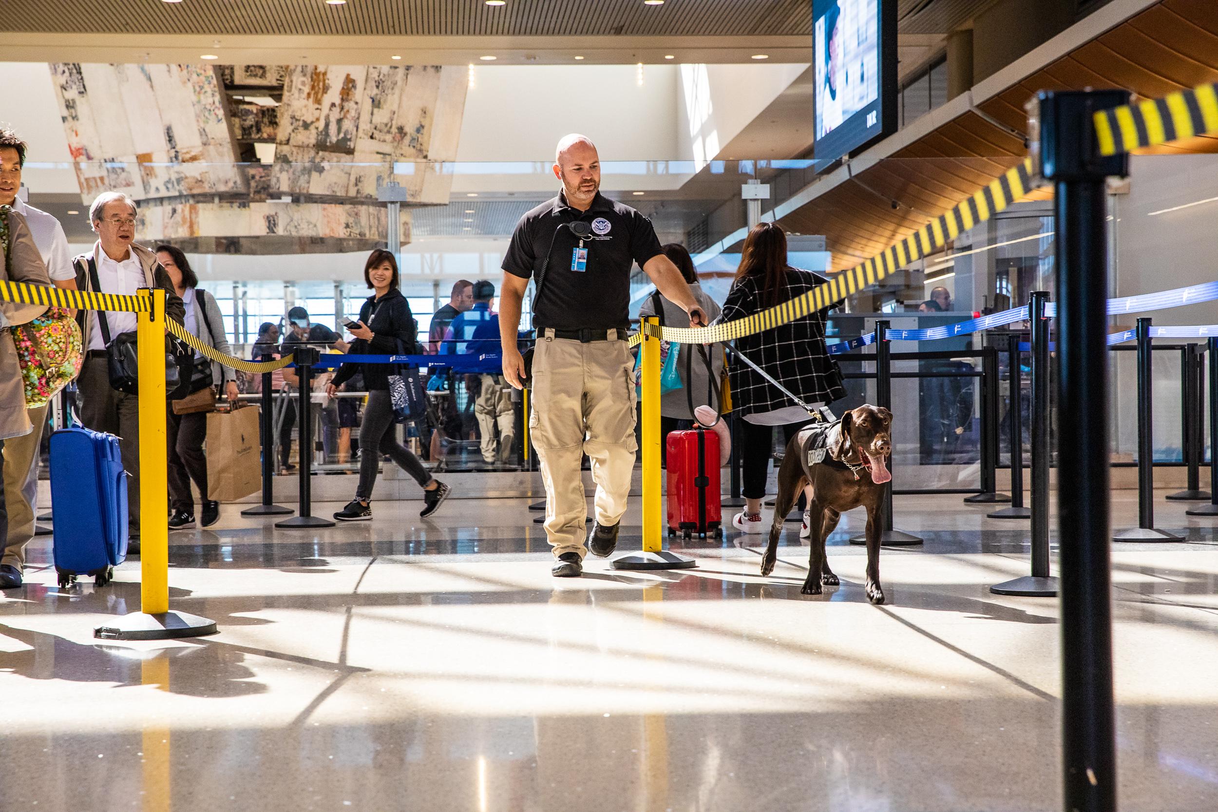 Tara Parekh TSA Canine LAX Photographs-04.jpg