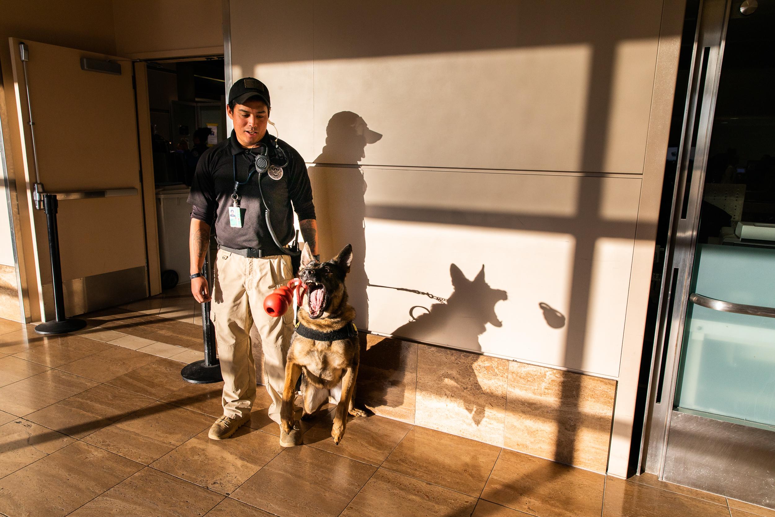 Tara Parekh TSA Canine LAX Photographs-06.jpg