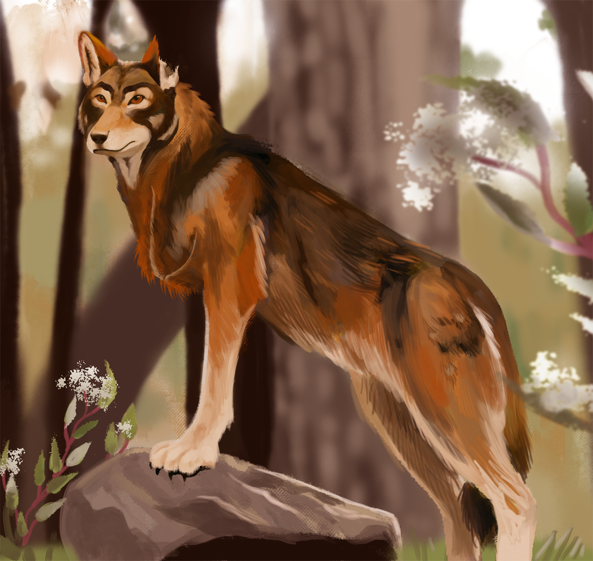 three-legged russet wolf