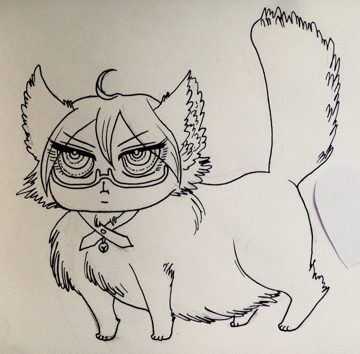 twogami kitty 1