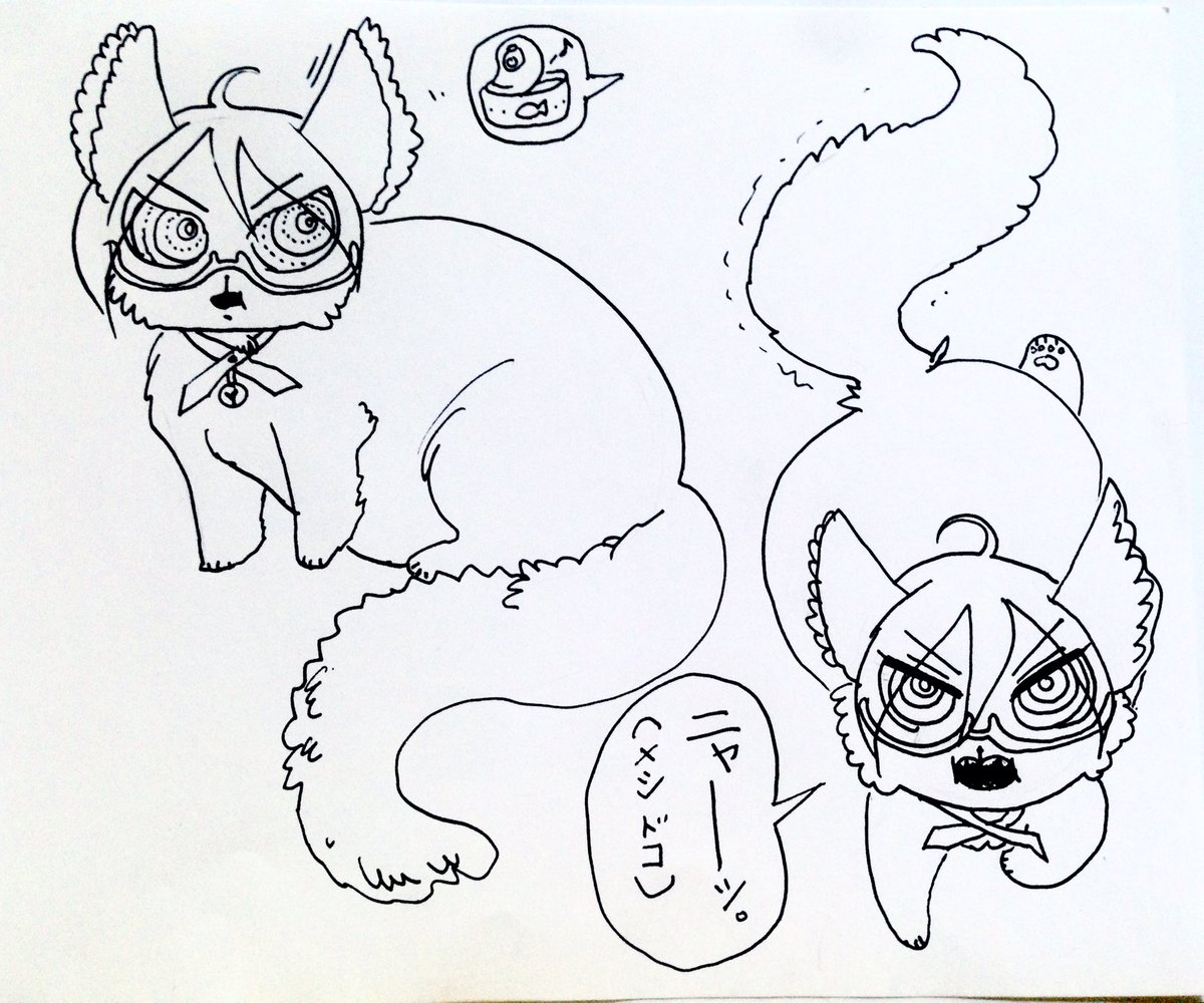 twogami kitty 3