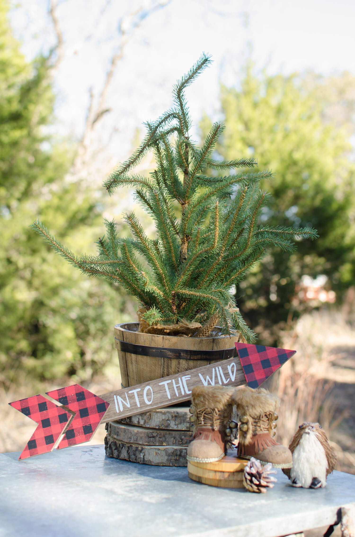 Lumberjack party ideas / Lumberjack party decor / lumberjack dessert table / First Birthday party ideas for boys / winter party ideas / outdoor party ideas / styled by Carolina from MINT Event Design / www.minteventdesign.com