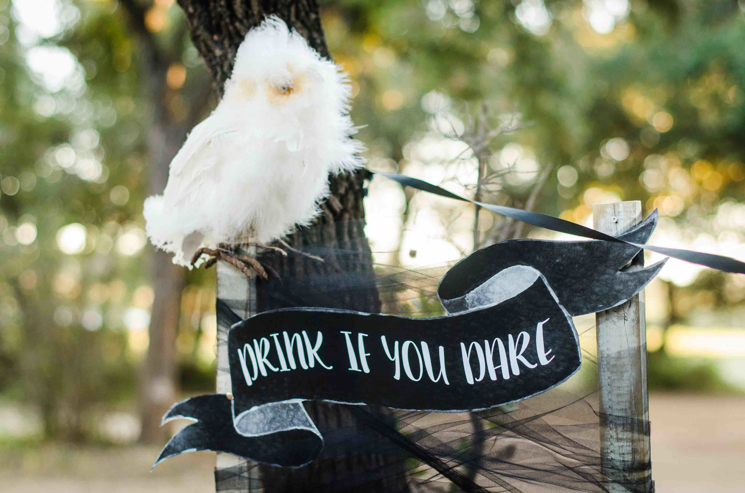 This Halloween Drink Station says to Drink if you Dare with an owl that's having a bad hair day. Halloween is a great time to have fun with your wording and making your Hallowen Party set up a little extra frightening. Click to see all the Halloween Party Ideas that you can re-create for your very own Halloween Kids Party. Styled by party stylist Mint Event Design. #halloween #partyideas #partyinspiration #partydecor #partysigns #halloweensigns #halloweendecorations