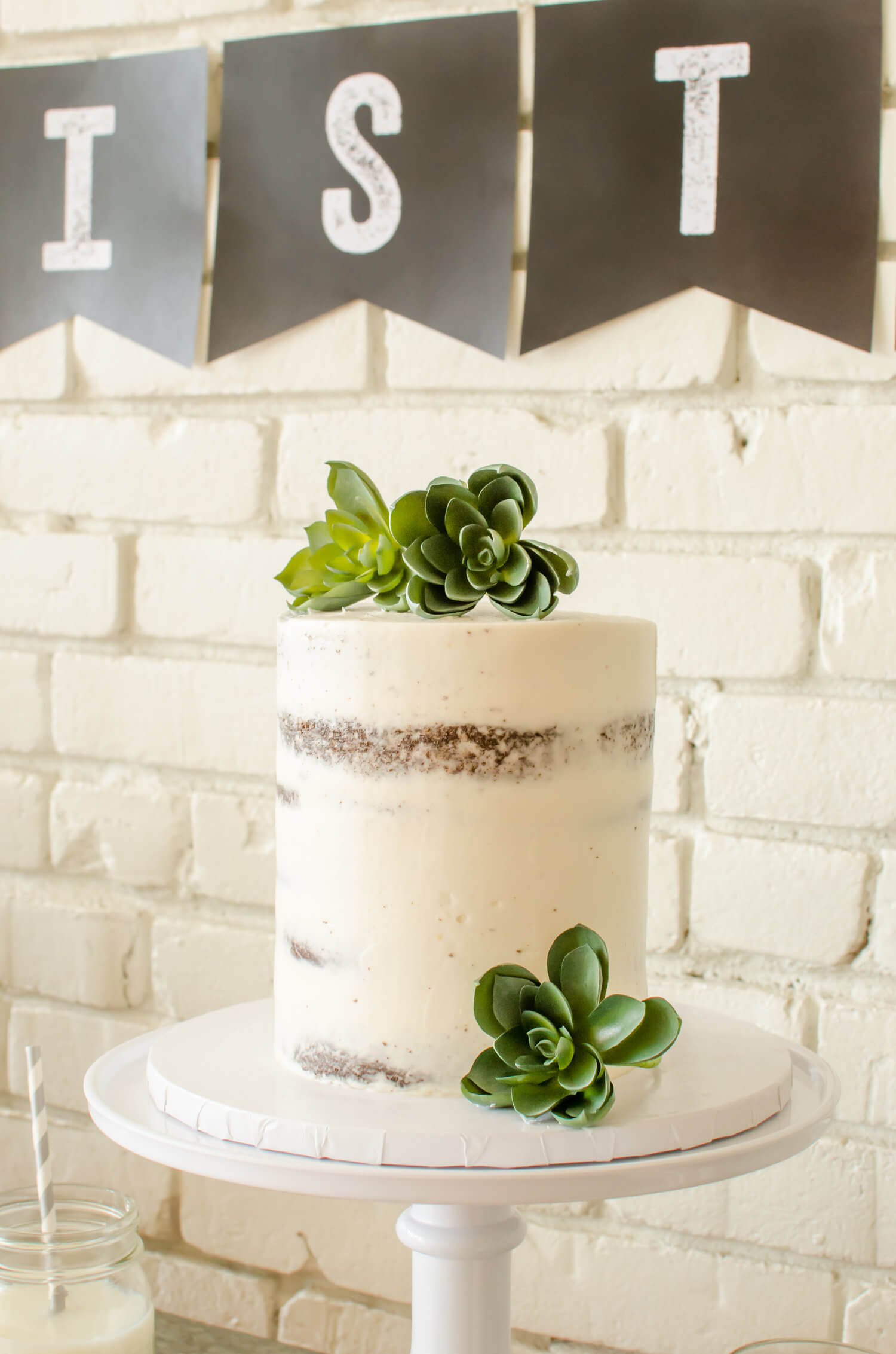 Chocolate Naked cake with succulents.jpg