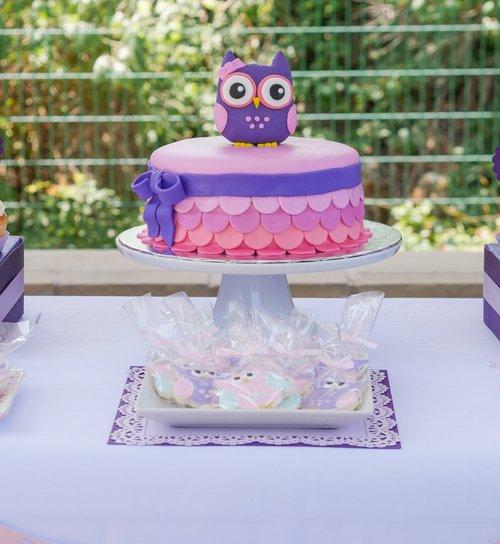 Owl+First+Birthday-29.jpg