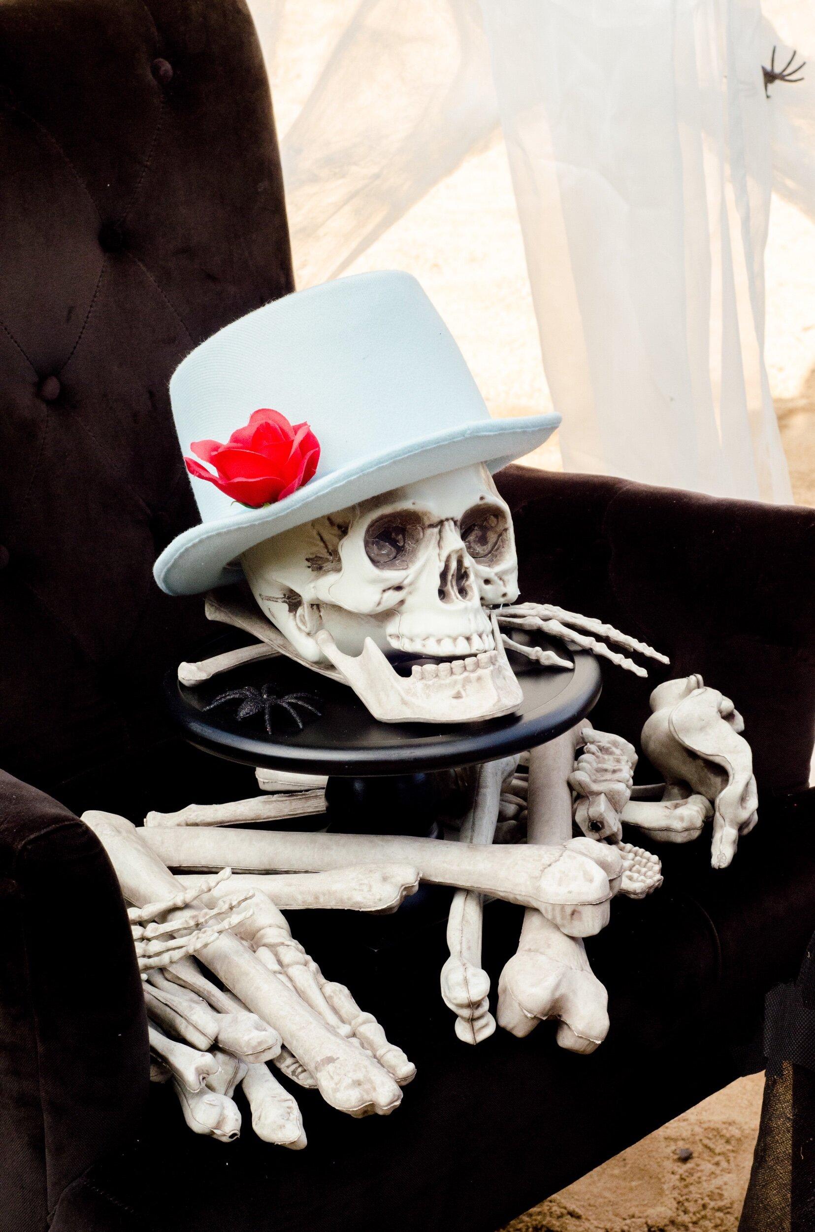 Skeleton halloween display ideas