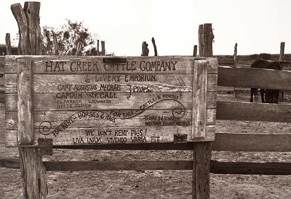 Hat-Creek-Cattle1.jpg