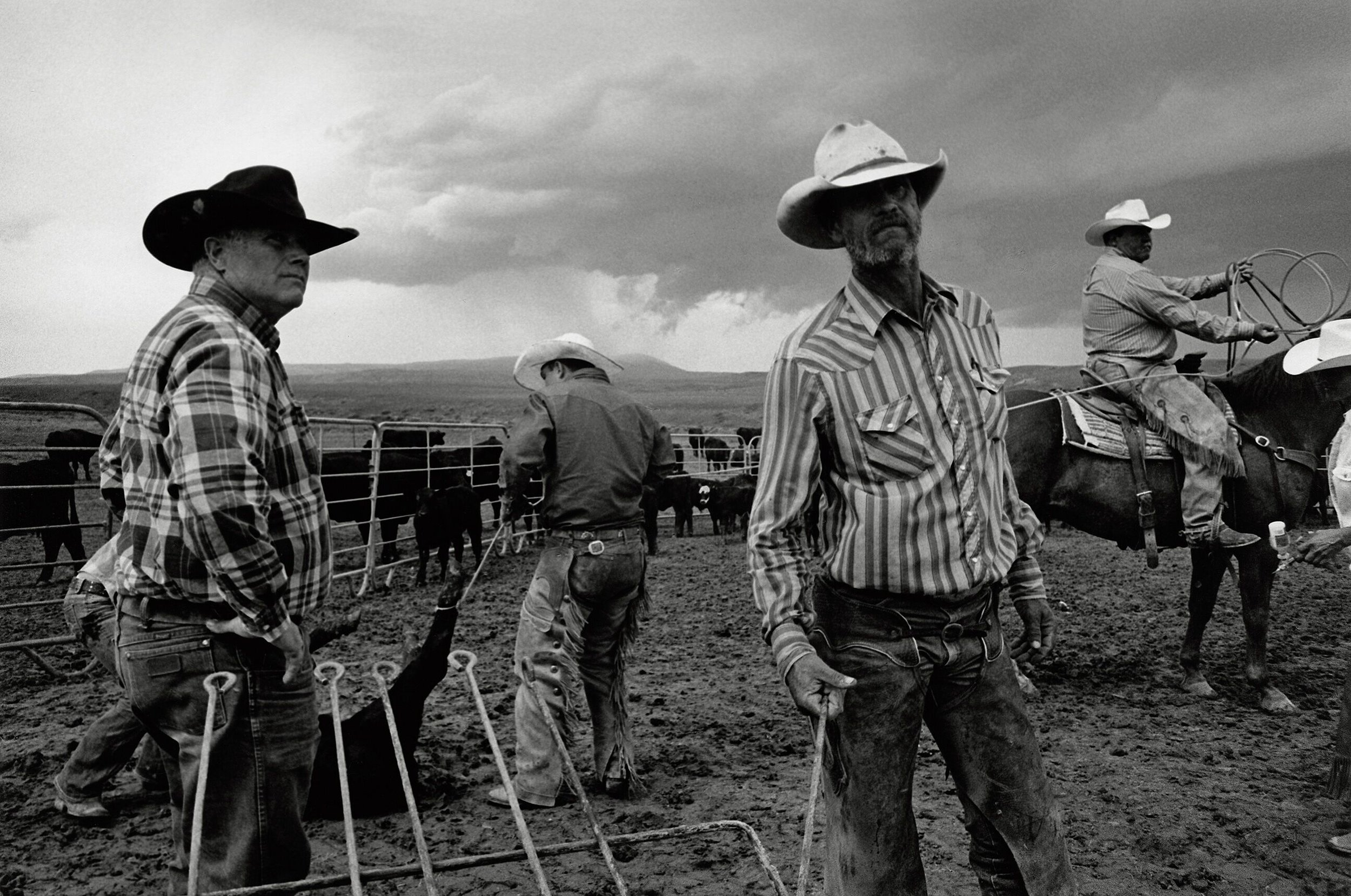 The cover photo to John Langmore's Open Range. Taken at the S ranch in Pryor Montana in 2013.