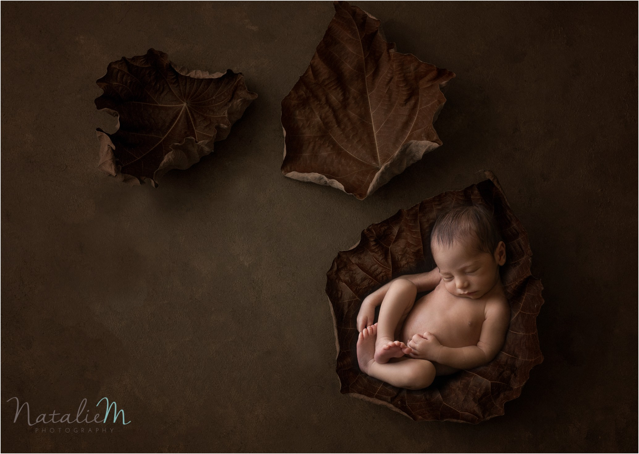 Newborn Photography Geelong_1134.jpg