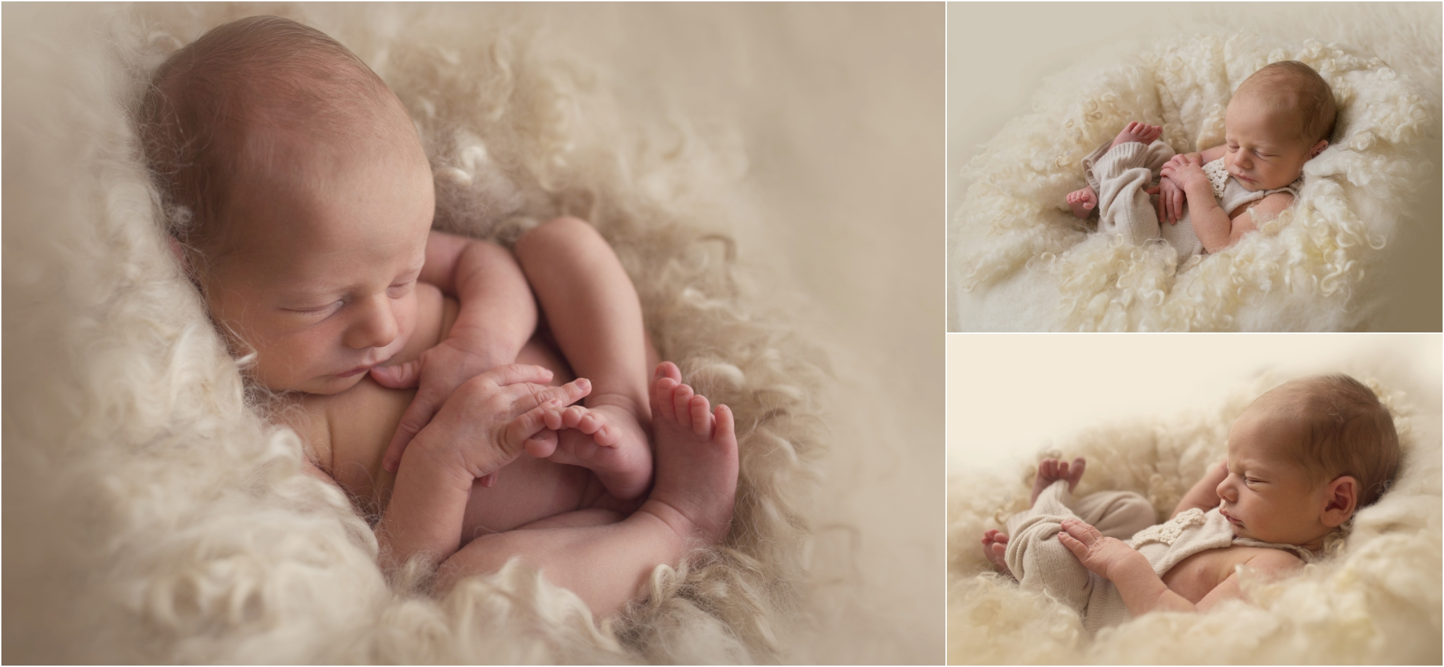 Newborn Photos Geelong_1278.jpg