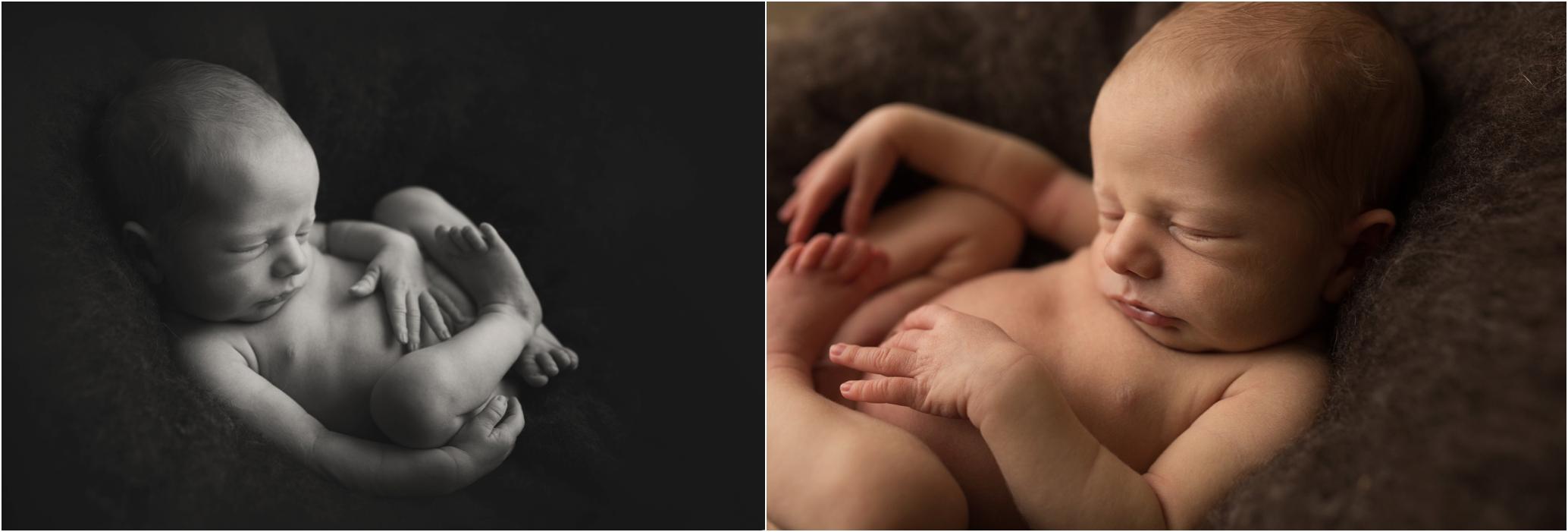 Newborn Photos Geelong_1281.jpg