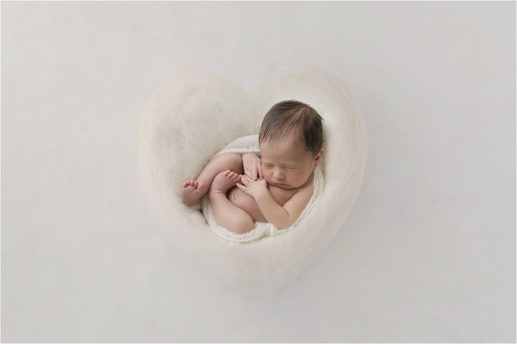 Newborn Photos Geelong_1298.jpg