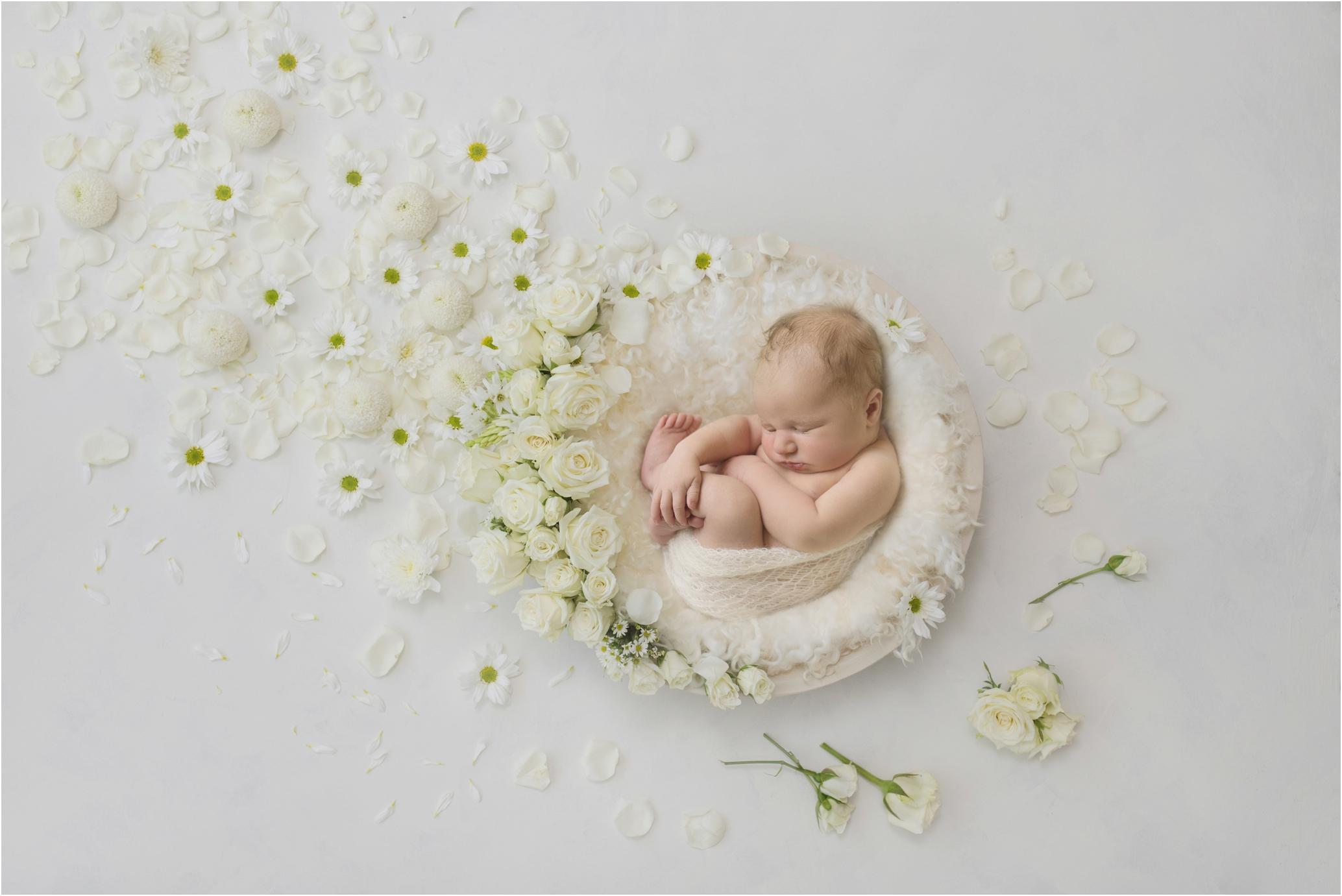 Newborn Photos Geelong_1344.jpg