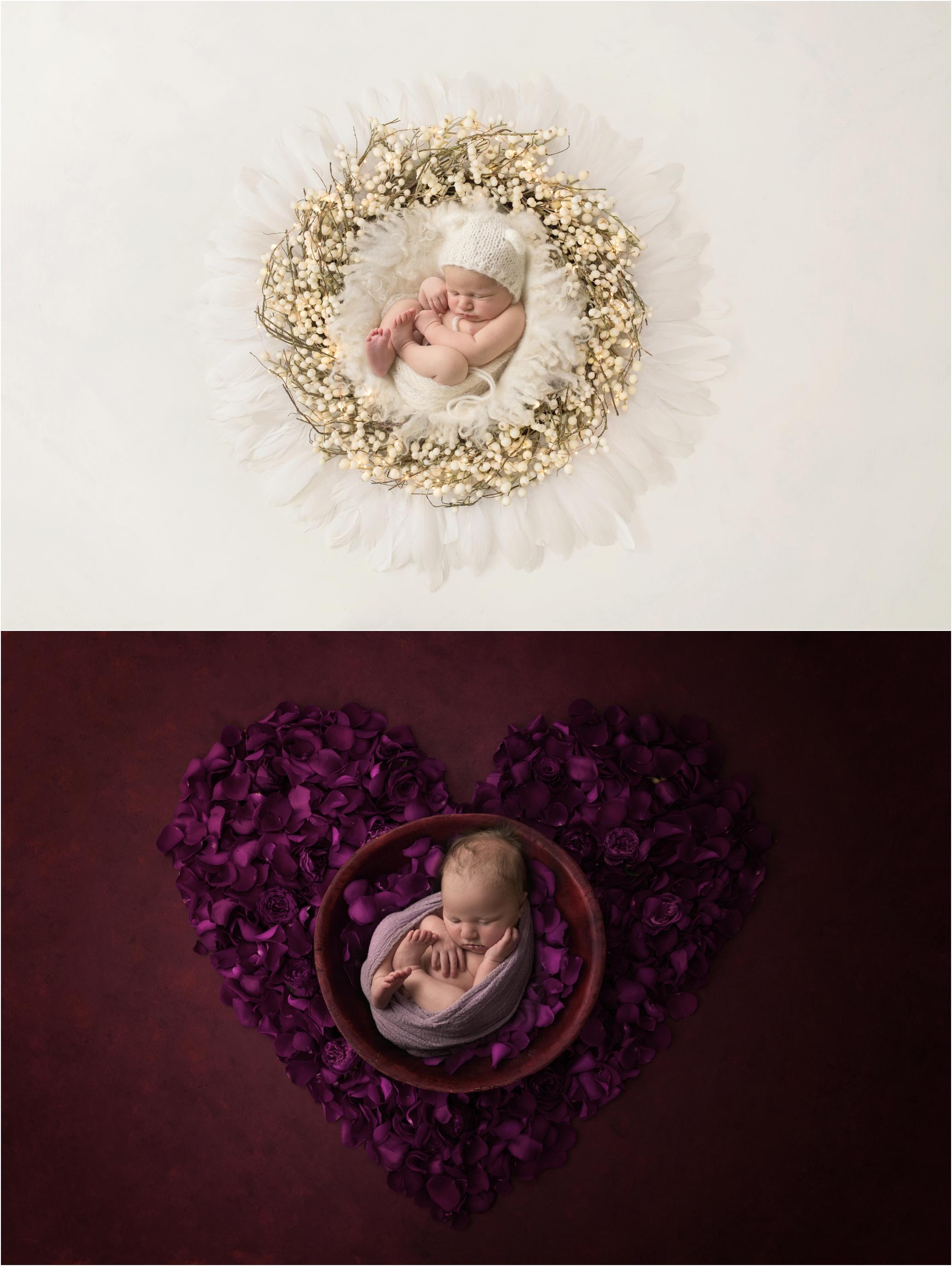 Newborn Photos Geelong_1343.jpg